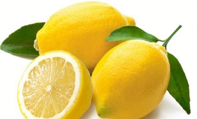 buah lemon untuk basmi kutu